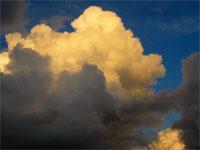 Réseau perception du climat (perceptionclimat.net)